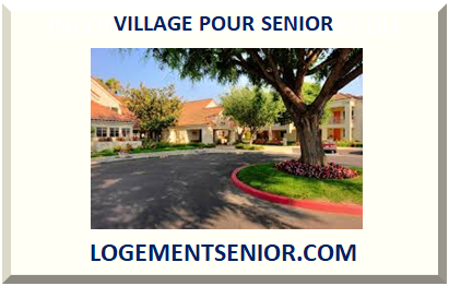VILLAGE POUR SENIOR